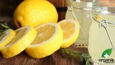 Limonlu Su İçmenin Zayıflamaya Faydaları