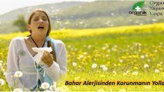 İbrahim SARAÇOĞLU Bahar Alerjisinden Korunmanın Yolları