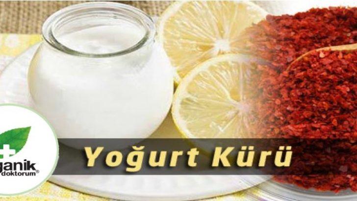 Göbek Eriten Limon Pul Biber Yoğurt Kürü