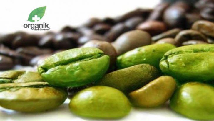 Yağ Yakıcı Yeşil Kahve Yararları ve Zararları