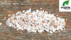 Kalsiyum Deposu Yumurta Kabuklarının Faydaları
