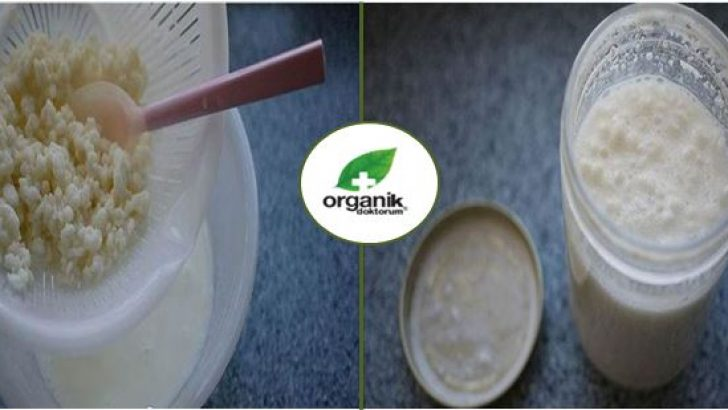 Evde Organik Kefir Nasıl Yapılır ve Faydaları Nelerdir?
