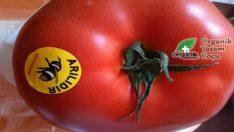 """Sebzelerin Üzerinde ki """"Arılıdır"""" Yazınca Organik Mi Oluyor?"""