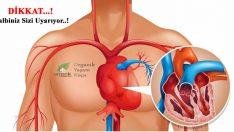 Vücudunuz Kalp Krizi Geçirmeden 1 Ay Önce Uyarıyor..!