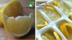 Kemoterapiden Çok Daha Etkili Dondurduğumuz Limon