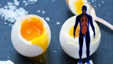 Güne iki yumurta ile başlamanın küçük ama inanılmaz güç 7 faydası!