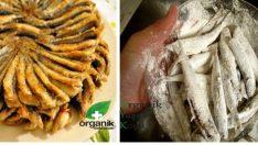 Son Günlerin Tartışma Konusu: Unla kızarmış balık kanserojen mi?