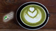Matcha Çayı Nedir? Faydaları Nelerdir?