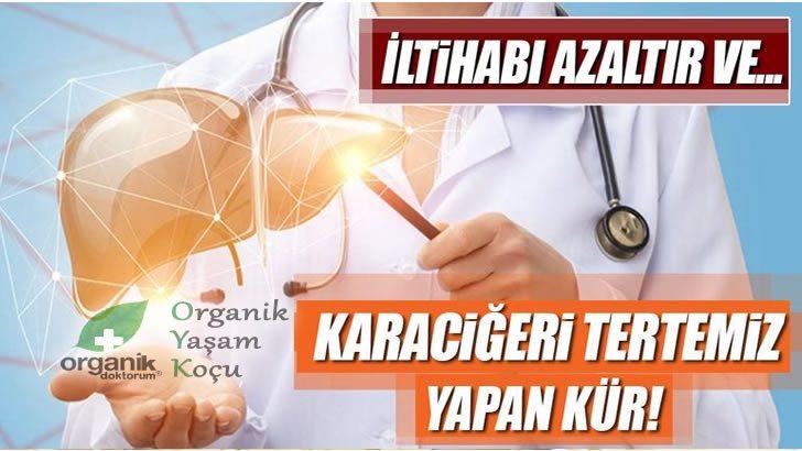 Karaciğeri Tertemiz Yapan Organik Kür
