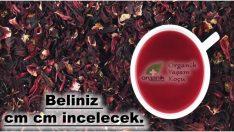 Belinizi İncelten Mucize karışım: Tarçınlı Hibiskus Çayı