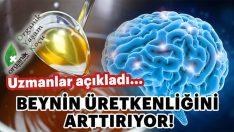 Beyin Üretkenliğini Artıran Besin Grubu