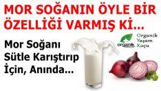 Süt ve Mor Soğanın Faydaları