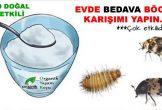 Böceklerden Kurtulmak için En Doğal Karışım