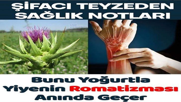 Bu Bitkiyi Yoğurtla Yiyenin Romatizması Geçer
