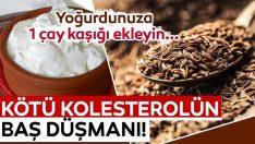 Kötü Kolesterolün Baş Düşmanı Bu Baharat…