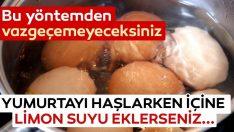 Yumurta Pişirmeyi Birde Böyle Deneyiniz