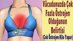 Vücudunuzda Çok fazla Östrajen Olduğunu Gösteren İşaretler