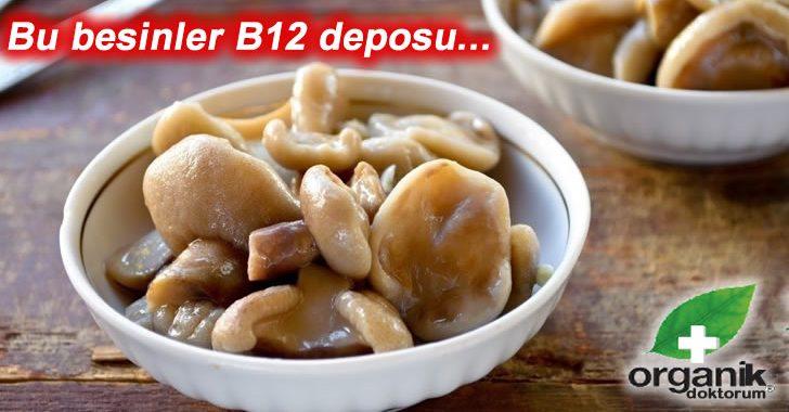Bu Besinler B12 Eksikliğine Birebir…