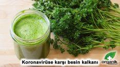 Koronavirüse karşı doğru beslenmenin detayları