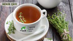 Kekik Çayının Faydaları ve Hazırlanışı