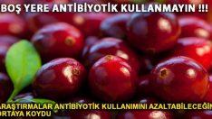 Antibiyotik Kullanarak Sağlığınızı Boş Yere Tehlikeye Atmayın
