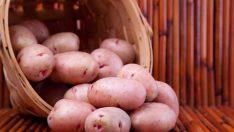 Patatesi Sadece Yemeklerde Kullanmayın! Patates Suyunun Mucize Faydaları