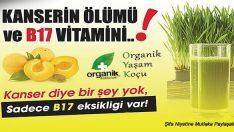 Kanseri Önlemede B17 Vitamininin Önemi