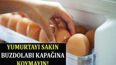 Yumurta Nasıl Saklanmalıdır?