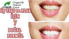 Diş Plağı Temizliği için Organik Kürler