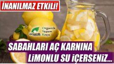 Aç Karnına Limonlu Su İçmenin Faydaları