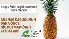 Ananas Kabuğunun Faydaları Var Mıdır?