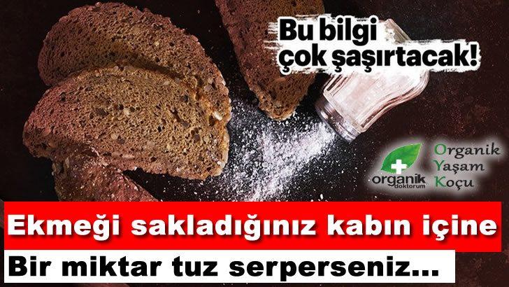 Ekmek Saklama Kabına Bir Miktar Tuz Serperseniz