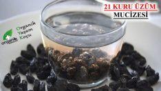 Suda Bekletilmiş 21 Kuru Üzümü Yeme Mucizesi