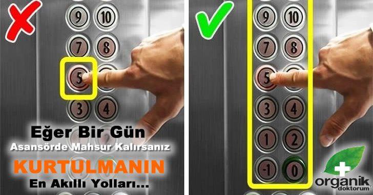 Asansörde Mahsur Kalırsanız Kurtulmanın En Akıllı Yolları