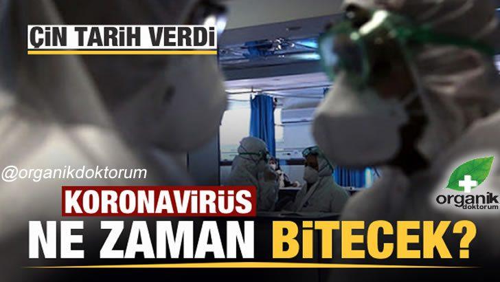 Corona Virüs Bu tarihte ortadan kalkacak..!